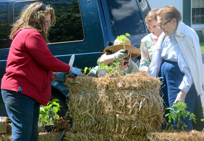 Providence Place residents help Sandy Visintainer place plants in bales